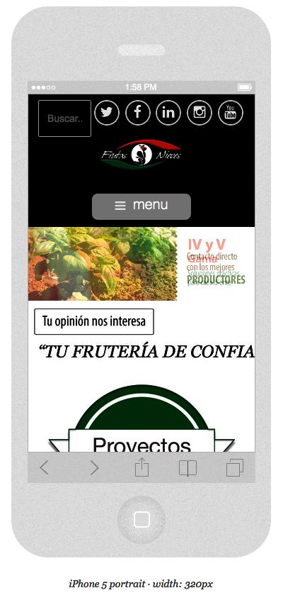 Frutas-Nieves-responsive